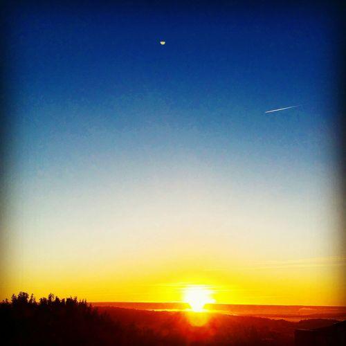 Enjoying The Sun Morning Light Morning Sky Yet Another Sunrise Yellow Orange Göteborg, Sweden Soaking Up The Sun Autum Sun Autumn Colors