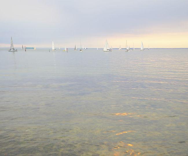 Calm sunset bayside Bayside Boats Brighton Beach Calm Sea Melbourne Bay Ocean Sailing Sea Sunsets Tranquil Scene Waterfront First Eyeem Photo