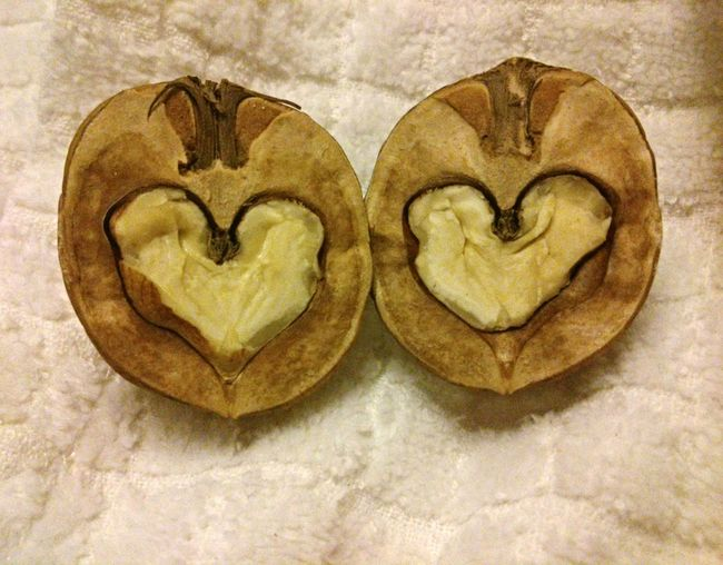 I still have this walnut. Орешек пока цел и хранится... Walnut Heart Coeur De Noix Сердце Грецкого Ореха Walnut Heart Noix Coeur  орех сердце Better Together
