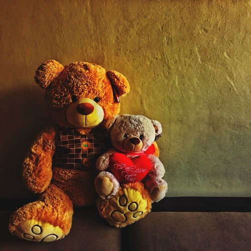 Photographic Memory These teddy bears were given to me by my special someone 😄❤️💖🐻 Teddy Bears Souvenirs ✨... Memories ❤ IPS2016Stilllife