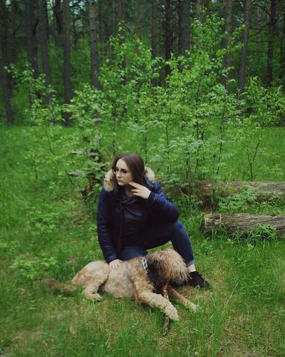 Young Woman Resting Dog On Grassy Field In Forest