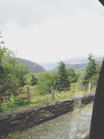 Ontheway Onthemove Through The Window Train Wales Wales❤ Wales UK Landscape Transportation Mountain Scenics Countryside Remote Tree Sky Day Outdoors Beauty In Nature Eeyem Photography No Edit EeYem Best Shots No Edit/no Filter Eeyemphotos EeyemBestPhotography Eeyem