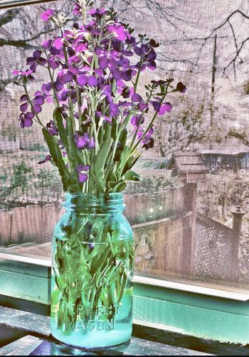 Flower Vase Plant Growth Table Petal Nature Fragility No People Indoors  Flower Head Window Sill Warmthandsunshine beauty in nature Close-up Day Freshness