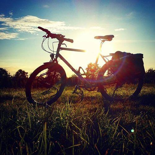 Like bike in the sunshine 😎 Biketowork Cycling Commuting Sunset Fahrradfahren Fahrrad Sonne Sonnenuntergang 😚 😍❤️ 😚 Fitfornix Sport Bikelove Biketouring Picoftheday Instamood