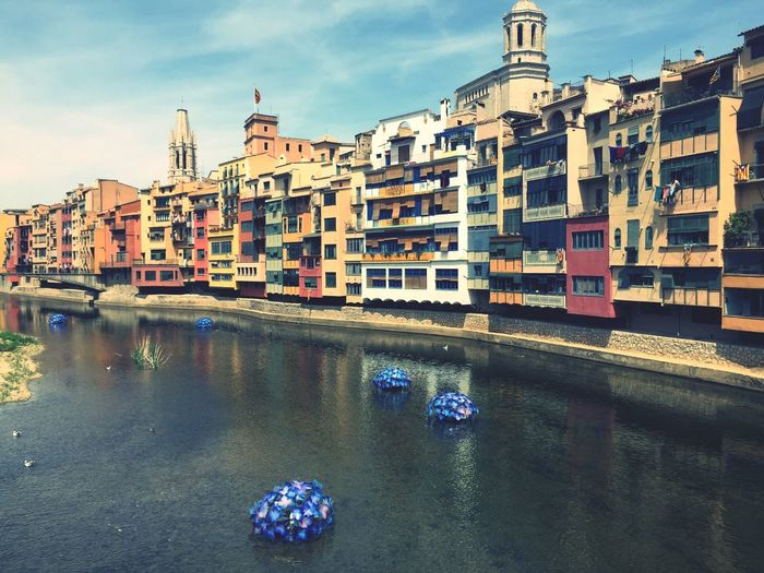 Gironatempsdeflors Flowers Exposition City Cityscape Girona Gironamenamora Goodmorning Taking Photos