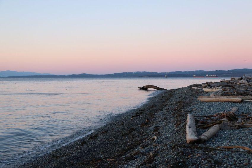 Suneise Sea Water Nature Beach Beauty In Nature
