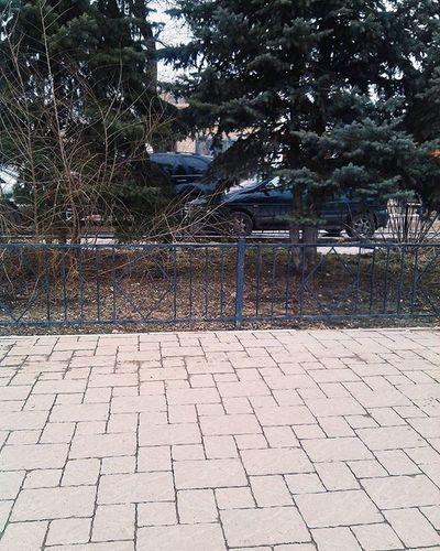 когданечегозакинуть 😅 уральск больница ель VSCO Kazakhstan Uralsk Spring Nature Like Follow Likeme Followme