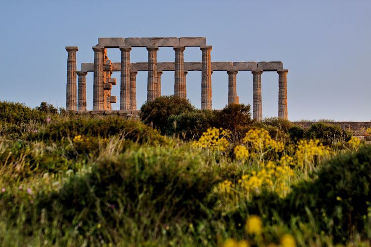 The Temple of Poseidon with vegetation in the foreground. Architecture Sky Plant History Architectural Column Built Structure Ancient Nature The Past Old Ruin Ancient Civilization No People Abandoned Travel Clear Sky Travel Destinations Old Day Land Archaeology Outdoors Ruined Deterioration Temple Temple - Building Temple Architecture Greece GREECE ♥♥