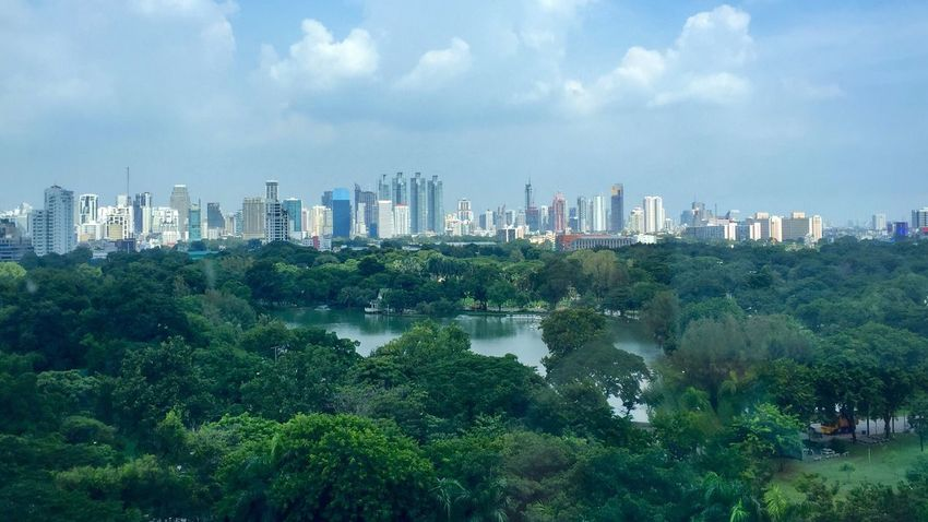 Green space amid the urban Green Space Green Space In The City Urban Landscape Busy City Refresh Abundant Birdseyeview Lumphini Park Veiw Lumphini Park Rachadumri Bangkok Skyline
