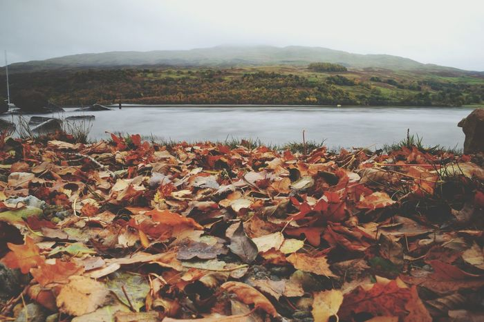 Autumn Views Autumn Nature Leaf Change Landscape Beauty In Nature Scenics Water Lake Outdoors Tranquil Scene Forest Tree No People Mountain Day Autumn🍁🍁🍁 Loch Tay Scotland Long Exposure Mist