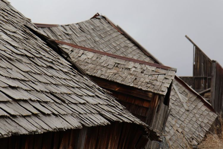 Ageing Barn Roof Brown Daytime No People Old Building  Old Buildings Roof Rooftop Rooftops White Sky