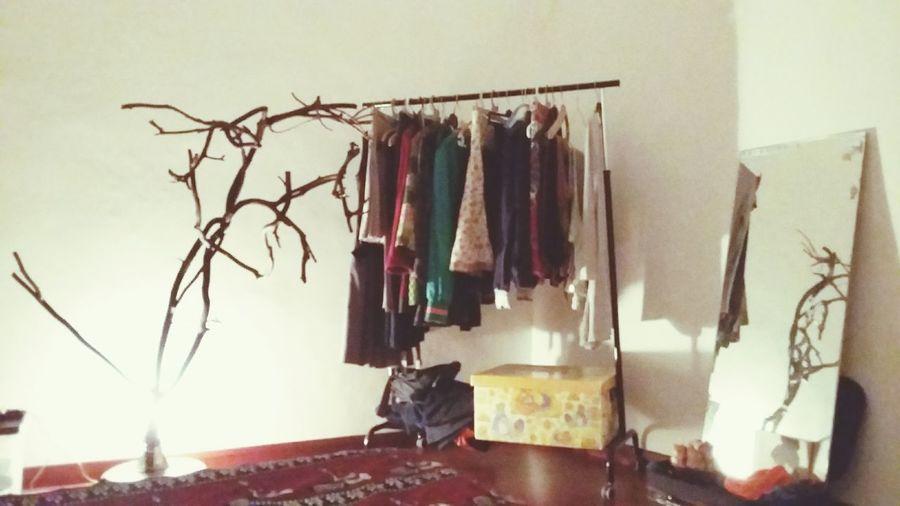 Guardrobe du primtemps Dressing Room Tree Brunches Springtime