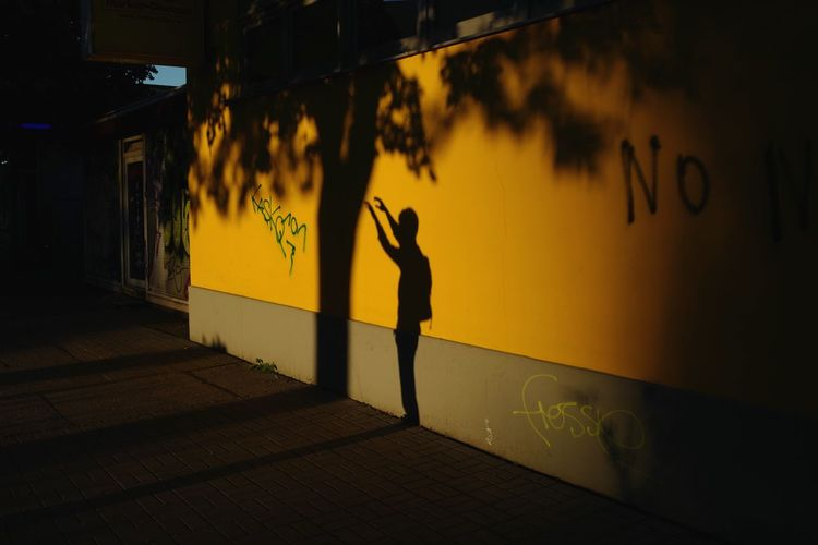 Silhouette man standing on footpath at sunset