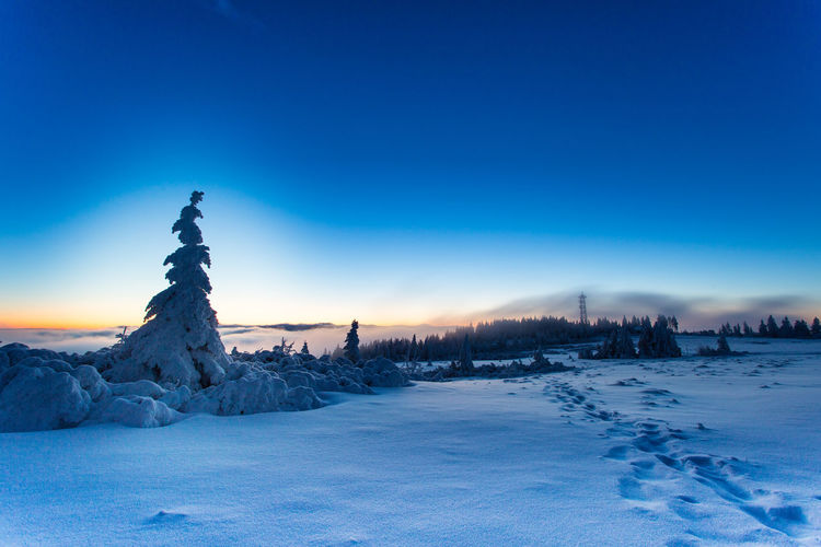 Winter Snow Cold Temperature Landscape Frozen Outdoors Blue Tree Mountain