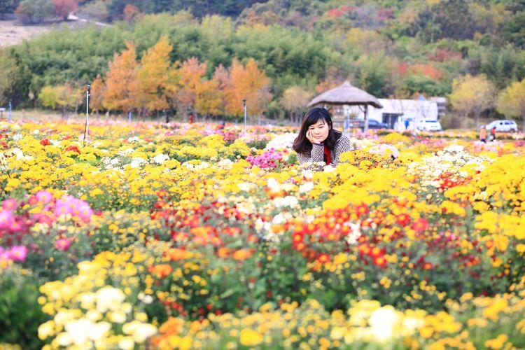 Woman amidst flowering plants