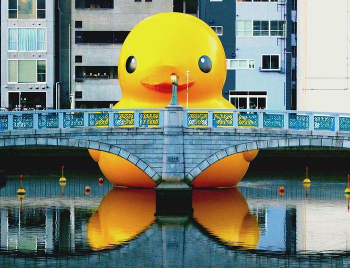 MBS Morring Sunrise EyeEm Cityscapes Osaka,Japan Lovelovelove Cute ガーコ 旅 キャラクター Travel