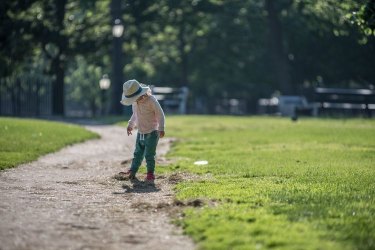 Full length of boy standing amidst grassy field on walkway during sunny day