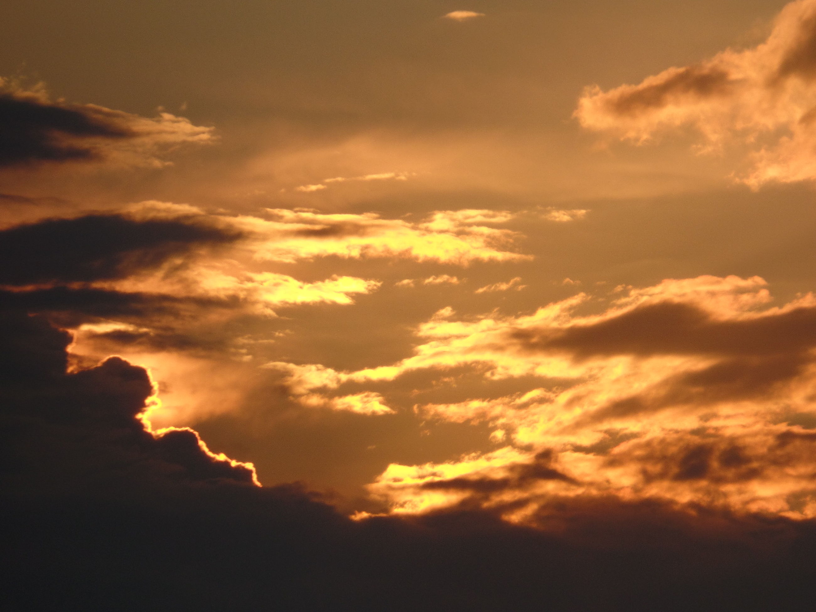 sunset, sky, beauty in nature, scenics, tranquility, tranquil scene, cloud - sky, low angle view, nature, orange color, idyllic, silhouette, cloudy, cloudscape, majestic, sky only, sun, cloud, dramatic sky, outdoors