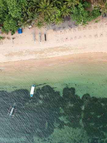 Paradise. Sanur Beach Sanur Bali Relaxing On The Beach Wonderful Place Travel Destinations Dream Vacation Dream Holiday Dream Beach Indonesia Drone Photography Bali Drone Photography Beach Wonderful Beach Clean Beach Stunning Beach Amazing Beach Beauty In Nature Bali Beaches Worlds Best Beaches Paradise Beach Paradise Water High Angle View Nature Day Outdoors Beach Plant Sea Tree EyeEm Ready   EyeEmNewHere
