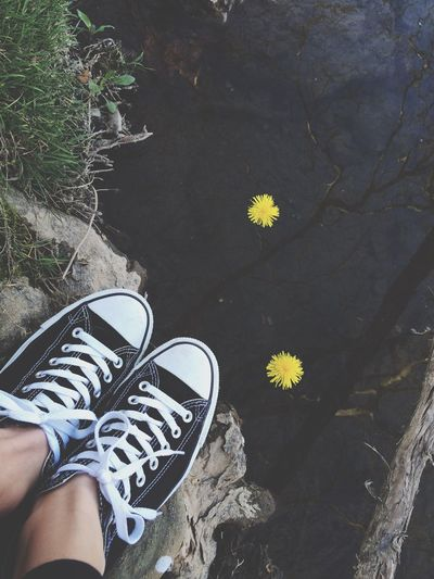 Low section of person wearing canvas shoes beside pond