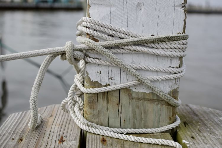 Close-up of rope tied over wood on pier
