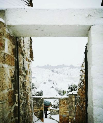 Puglia, albero bello.2016 Puglia. Puglia Puglia South Italy Puglia2016 Pugliastyle Alberobello No People Outdoors Italia Love Neve Winter Snow ❄ Day