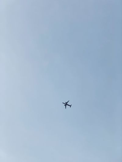 Aeroplane Air Vehicle Flying Mode Of Transportation Transportation Airplane Low Angle View Sky Mid-air No People Blue Nature Travel on the move Copy Space Day Motion Outdoors Clear Sky Journey