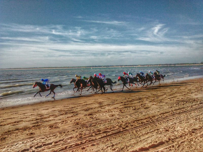 Horses Race SPAIN Mobilephotography Sanlucardebarrameda Hdr_Collection Beach Animals Going The Distance