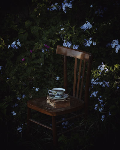 High angle view of tea cup and book on empty chair at yard