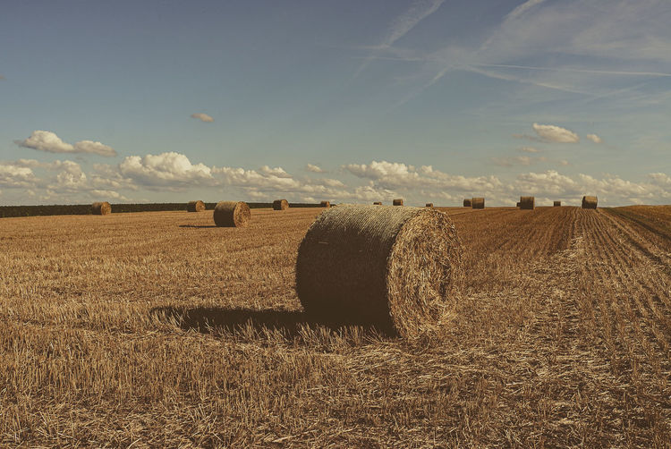 Hay Bale Cereal