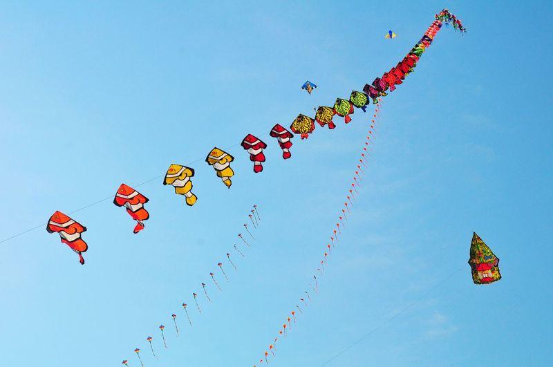 Traditional Kite Festival EyeEm Best Shots EyeEmNewHere EyeEm Selects EyeEm Gallery EyeEm Best Edits Traditional Kite Kite Kite Flying Kite Festival Traditional Kite Festival Fish Layangan Nemo Flying Multi Colored Teamwork Gambling Motion Arts Culture And Entertainment Internet Red Sky Airshow Aerobatics Kite - Toy Formation Flying