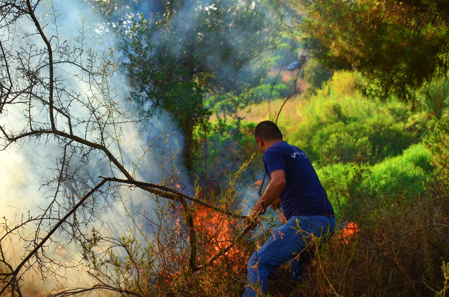 Putting out a forest fire in Lebanon Disaster Fire Firefighter Firefighters Fireman Firemen Firemen At Work Forest Forest Fire Natural Disaster Smoke