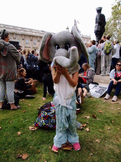Global March Fro Elephants And Rhinos, London, U.K., 24/09/2016 Global March For Elephants And Rhinos London Stevesevilempire Steve Merrick Ban Ivory Ivory Trade