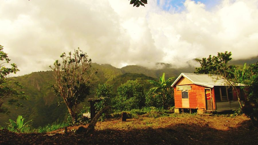 Jamaica Blue Mountain Little House Cloud - Sky Mountain No People Built Structure Architecture Outdoors Sky Day Building Exterior Tree Nature