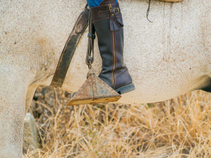 Animal Leg Animal Themes Body Part Boot Close-up Day Farmer Foot Hipica Horse Horse Life Horse Riding Horseback Riding Horses Human Body Part Human Leg Leg Low Section Nature Outdoors People Real People Stirrup équitation