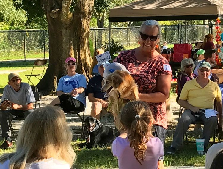 Kathy and Jack at the 'Dogs For Life' Halloween Pawrade. Jack's costume is an environmental activist kids love Jack Kathy and Jack visit the residents at two senior living facilities. everyone loves Jack our res #NotYourCliche Environmental Activist Kids Love Jack Everyone Loves Jack Rescue Dog Therapy Dog Medium Group Of People Communication All Smiles Happiness Sharing Joy
