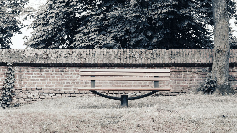 View of bench in park