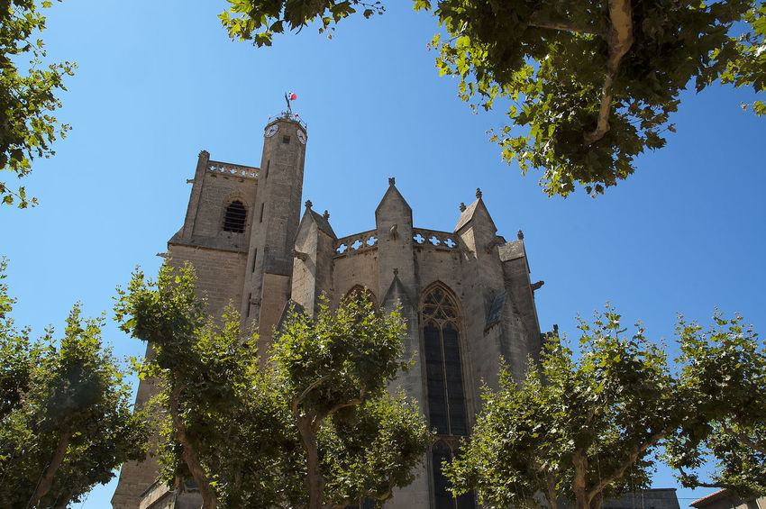 Architecture Building Exterior Cathedral Church Place Of Worship Religion Spirituality Tree