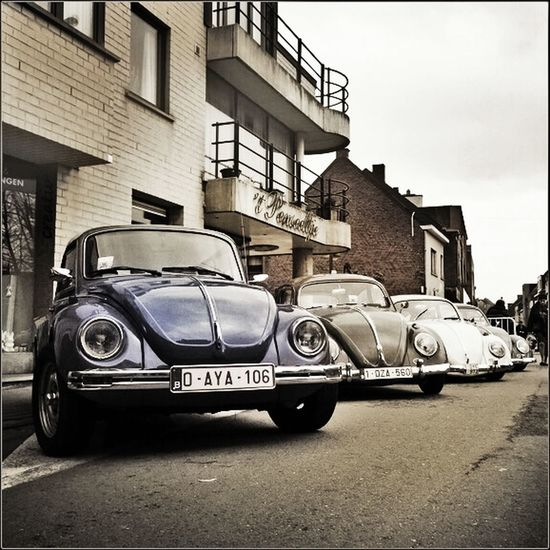 VWs Check This Out Taking Photos Belgium. Belgique. Belgie. Belgien. Etc. Ninove Old Cars Classic Car VW Streetphotography