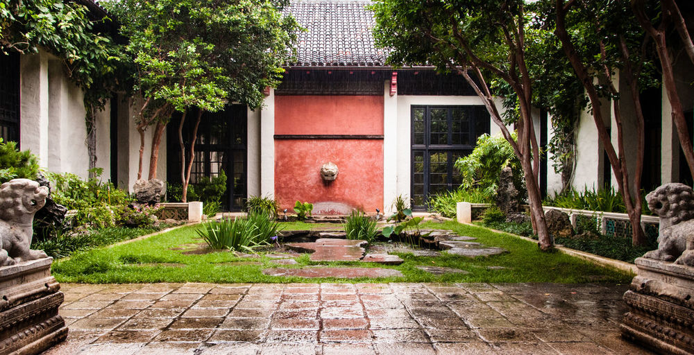 Courtyard at the Honolulu Museum of Arts Built Structure Courtyard  Courtyard House Grass Green Green Color Growing No People Plant Quiet Quiet Moments Rain Rainy Red Red Lips Taking Photos Taking Pictures Tree Walking Around Walkway