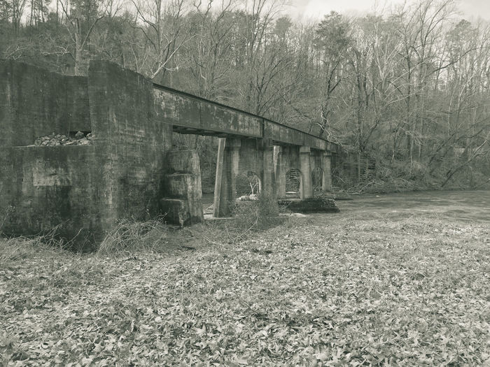 Abandoned Architecture Bare Tree Building Exterior Built Structure Day Grass Nature No People Outdoors River Train Tree Vintage
