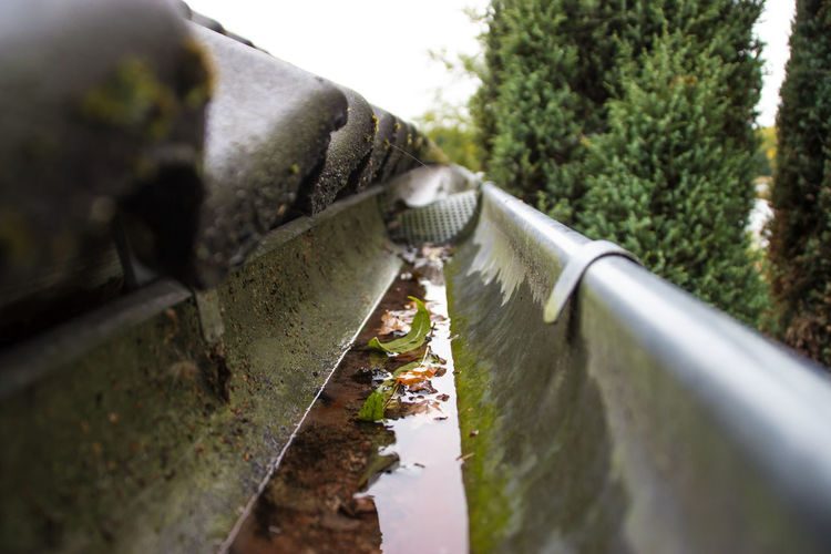 Weatherstrip Autumn Blätter Day Gutter Herbst Leaves Leaves🌿 Nature No People Outdoors Regenrinne Wasser Reflexion Water