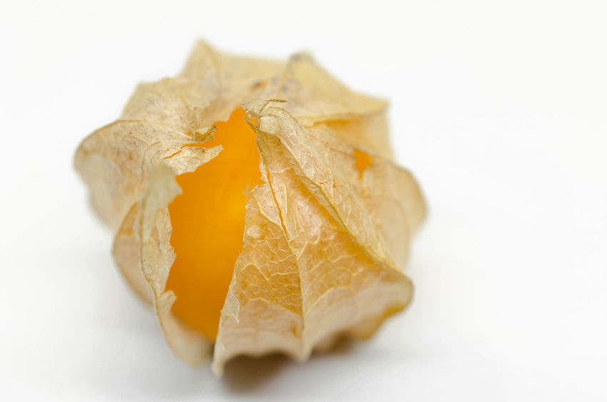 Close up of Cape gooseberry (physalis) isolated on white background Anthocyanins Antioxidants Cape Gooseberries Close-up Culinaryfood Detox Fruits Flavonoids Freshness Healthy Food Juicy Fruit No People Orange Color Peruviana Phenolic Acids Refreshment Studio Shot Vibrant Color White Background