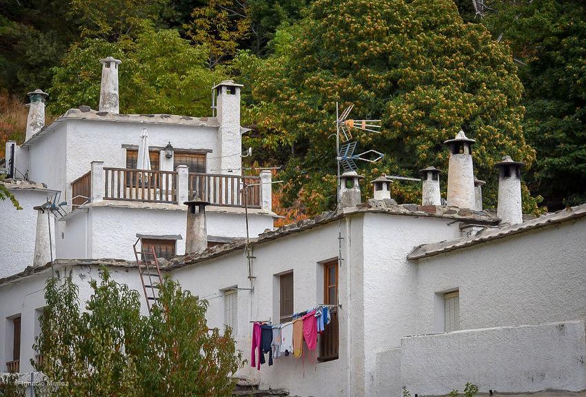 Alpujarras granadinas. Granada, Spain EyeEm Selects #ignafotos Arquitecturas Nature SPAIN Arquitecture Tree Architecture Building Exterior Residential Structure