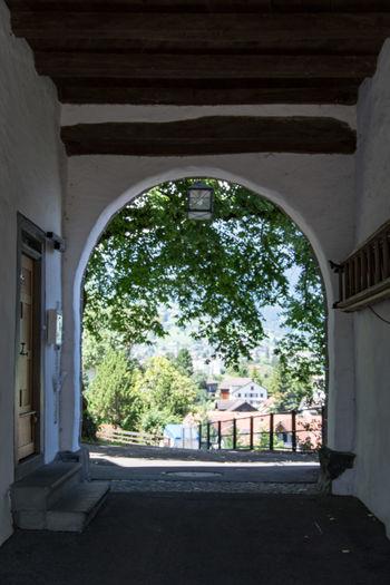 Doors Doors Lover Door_series Werdenberg Tree Tradition Politics And Government Home Interior Home Showcase Interior Architecture