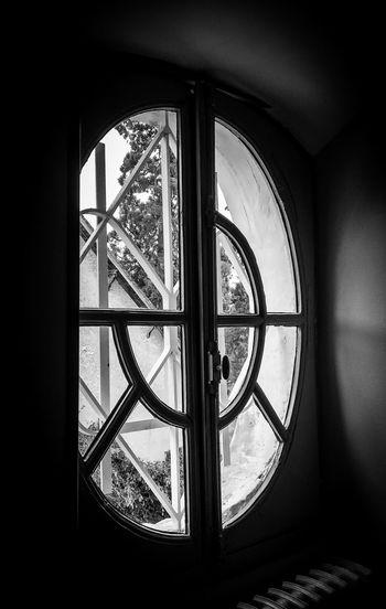 Window Window