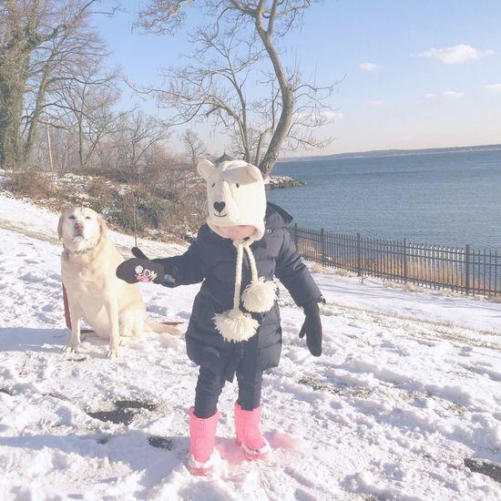 Winter Winter Landscape Dogslife Beachphotography Beach Littlegirl Eastcoast Newyork New York