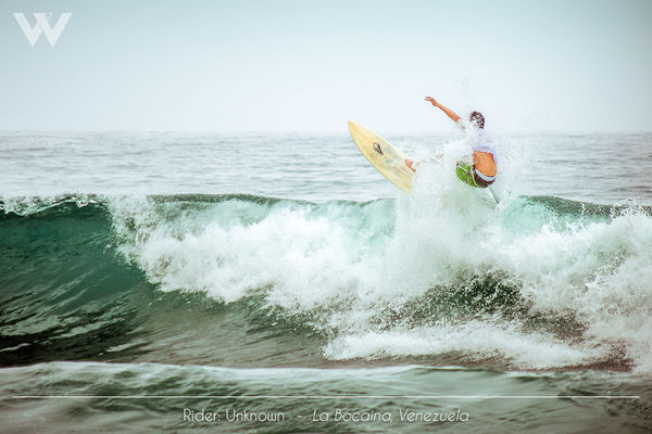 Blue Wave Extreme Sports Horizon Over Water Non-urban Scene Outdoors Surf Water Water Sport Wave