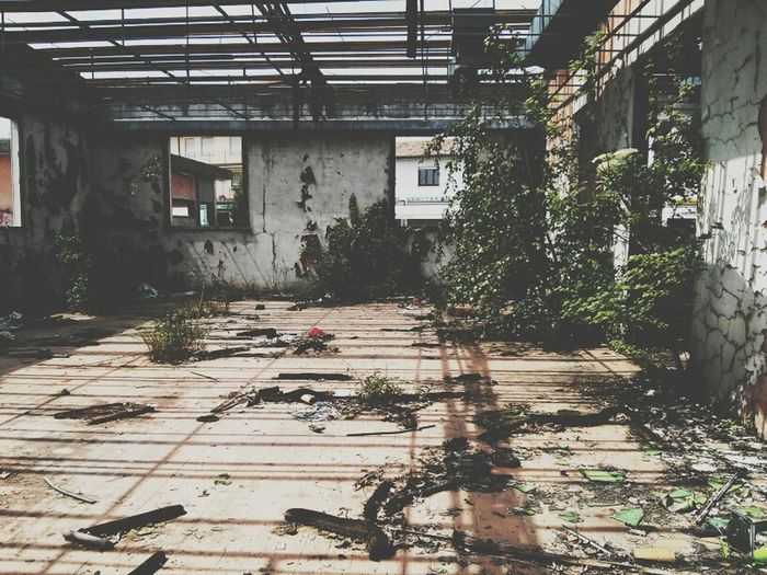 Beauty Of Decay Shootermag Steph Filter EyeEm Best Shots