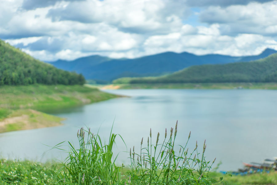 Beauty In Nature Chiang Mai   Thailand Cloud - Sky Dam Day Grass Green Color Lake Landscape Mae Ngat Mountain Mountain Range Nature No People Outdoors Scenics Sky Thai Thailand Tranquil Scene Water